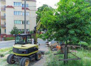 Trwa modernizacja torowiska w ciągu Bydgoskiej