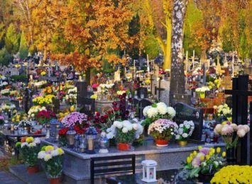 Wszystkich Świętych: organizacja ruchu przy cmentarzach w Toruniu